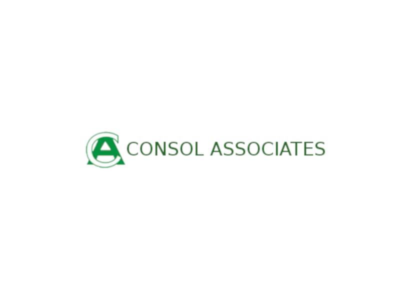 Consol Associates