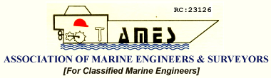 Association of Marine Engineers and Surveyors (Ames)